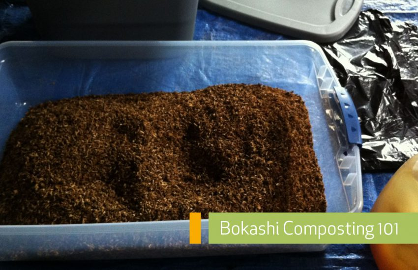 Bokashi Composting How To Main